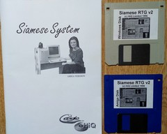 siamese_systems_06